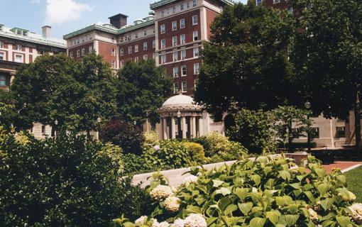 Columbia university executive education strategy